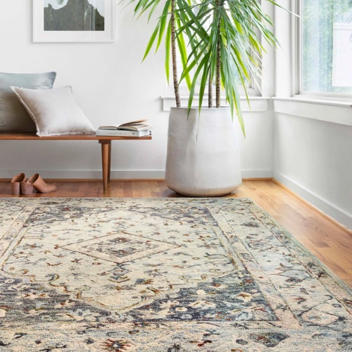 Loloi-rug | LA Carpet Warehouse, Inc