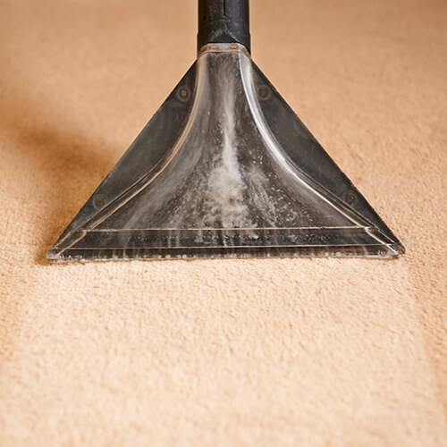 carpet_cleaning2_500x500